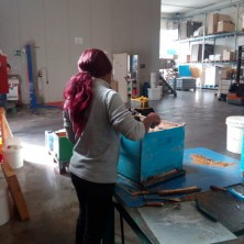 <p>Cooperativa Il Pungiglione: il lavoro &egrave; una via essenziale per il riscatto delle donne vittime di tratta</p>